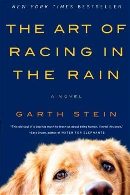 Art of Racing in the Rain: A Novel, by Stein 9780061537967