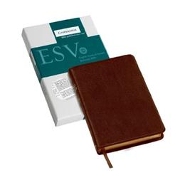 ESV Pitt Minion Reference Bible, Brown Calfsplit Leather, Red Letter Text ES444:XR Box Lea 9780521228145