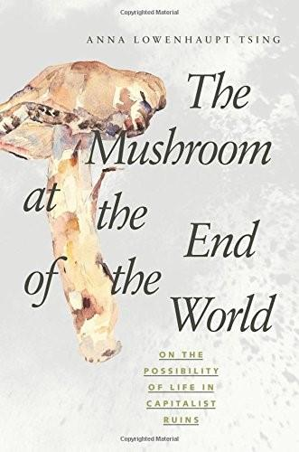 Mushroom at the End of the World: On the Possibility of Life in Capitalist Ruins, by Tsing 9780691162751