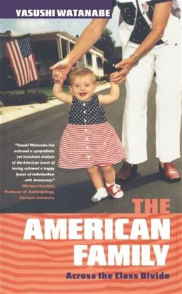 The American Family: Across the Class Divide 9780745315522