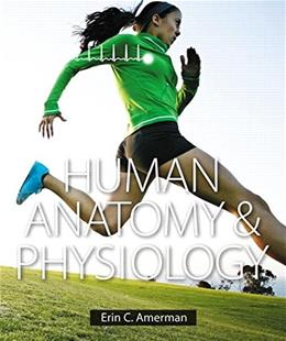 Human Anatomy and Physiology, by Amerman 9780805382952