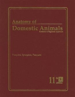 Anatomy of Domestic Animals :: Systemic &_Regional Approach 11TH EDITION 5th 9780962311420
