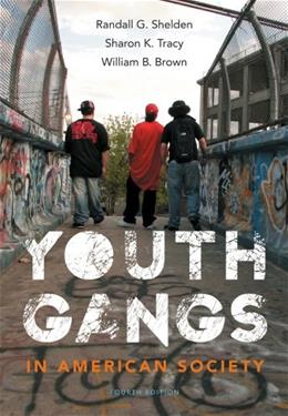 Youth Gangs in American Society 4 9781133049562