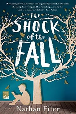 The Shock of the Fall: A Novel 9781250028136