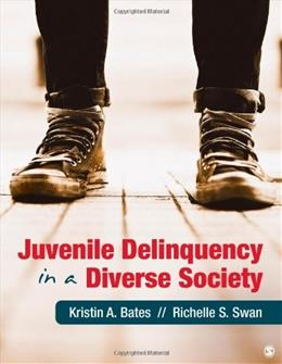 Juvenile Delinquency in a Diverse Society 1 9781412998123