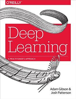 Deep Learning: A Practitioners Approach 9781491914250
