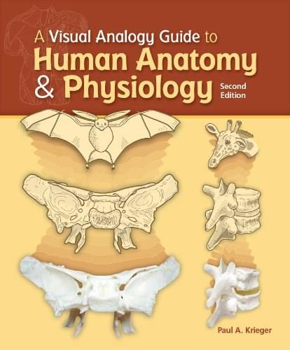 A Visual Analogy Guide to Human Anatomy & Physiology, by Krieger, 2nd Edition 9781617310669