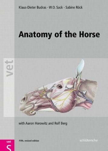 Anatomy of the Horse, by Budras, 5th Edition 9783899930443